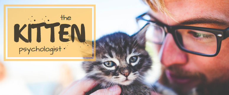 The Kitten Psychologist stories header